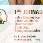 banner-jornadas-discapacidad-fondo-1024x399 bis